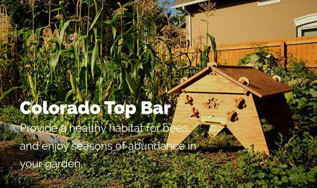 A Colorado Top Bar Beehive